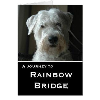 Tarjeta de condolencia de trigo de Terrier