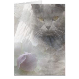 Tarjeta de condolencia del gato