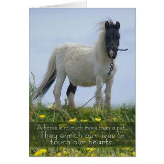 Tarjeta de condolencia del mascota del caballo -