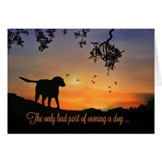 Tarjeta de condolencia del perro, condolencias