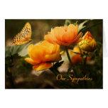 Tarjeta de condolencia floral de la mariposa