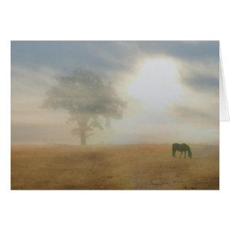 Tarjeta de condolencia para el dueño del caballo