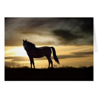 Tarjeta de condolencia para la pérdida de caballo