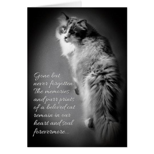 Tarjeta de condolencia para la pérdida del gato