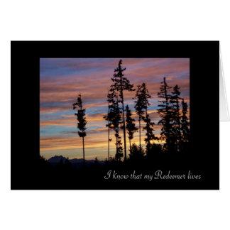 Tarjeta de condolencia silueteada de los árboles