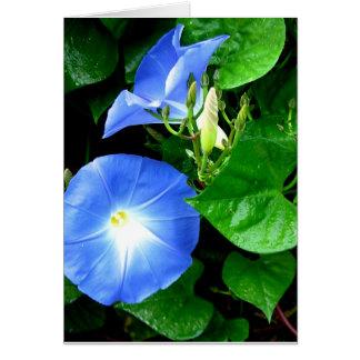 Tarjeta de cumpleaños azul divina de la correhuela