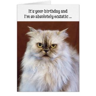 Tarjeta de cumpleaños chistosa - gato persa