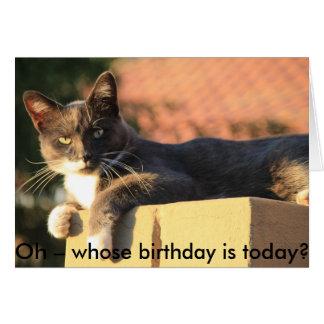 Tarjeta de cumpleaños con el gato: ¿De quién