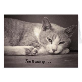 Tarjeta de cumpleaños con el gato: Hora de