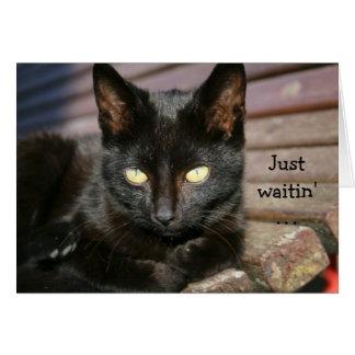 Tarjeta de cumpleaños con el gato negro