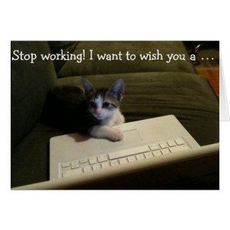 Tarjeta de cumpleaños con el gato: ¡Pare el