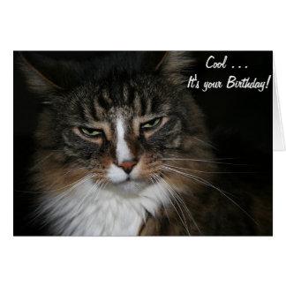 Tarjeta de cumpleaños con el gato: Refresqúese…