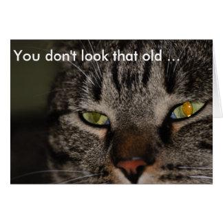 Tarjeta de cumpleaños con el gato: Usted no mira