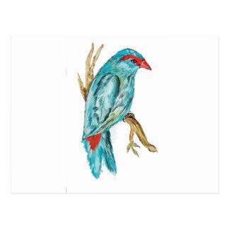 Tarjeta de cumpleaños con el pájaro azul - postal