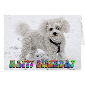 Tarjeta de cumpleaños de Bichon Frise