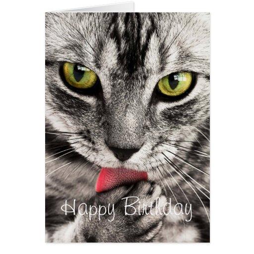 Tarjeta de cumpleaños de encargo linda del gato de