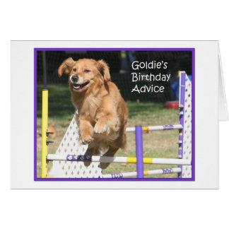 Tarjeta de cumpleaños de la agilidad del golden