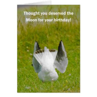 Tarjeta de cumpleaños de la diversión - gaviota qu