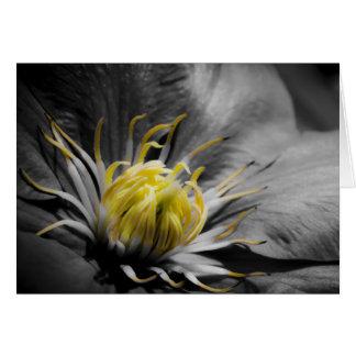 Tarjeta de cumpleaños de la flor del Clematis