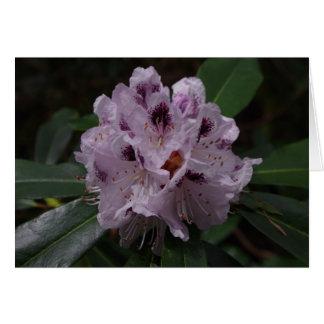 Tarjeta de cumpleaños de la flor del rododendro