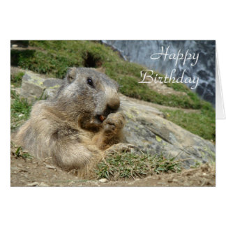 Tarjeta de cumpleaños de la marmota