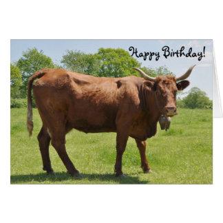 Tarjeta de cumpleaños de la vaca de Salers