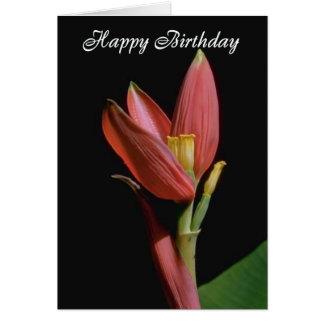 Tarjeta de cumpleaños de las flores 4171