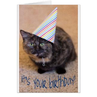 Tarjeta de cumpleaños de Purrfect