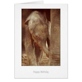Tarjeta de cumpleaños del becerro del elefante