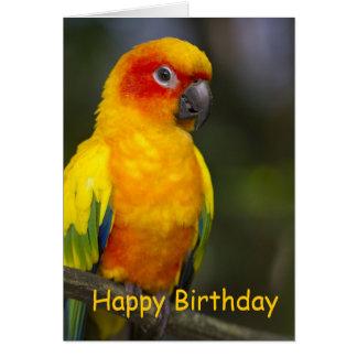 Tarjeta de cumpleaños del espacio en blanco del