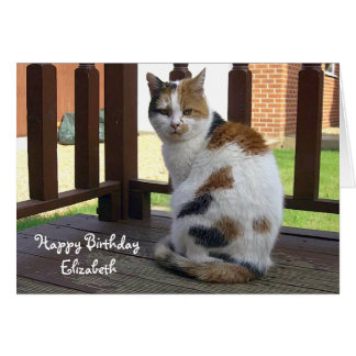 Tarjeta de cumpleaños del gato de calicó