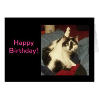 Tarjeta de cumpleaños del gato del gatito