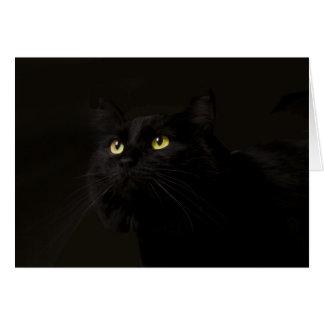 Tarjeta de cumpleaños del gato negro por el foco