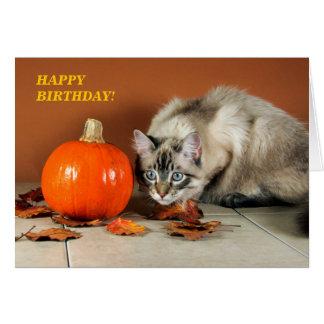 Tarjeta de cumpleaños del gato y de la calabaza