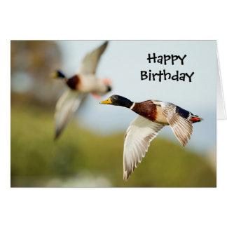Tarjeta de cumpleaños del pato (o cualquier