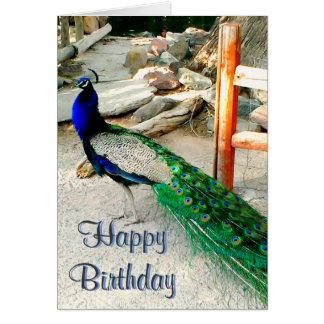 Tarjeta de cumpleaños - diseño del pavo real,