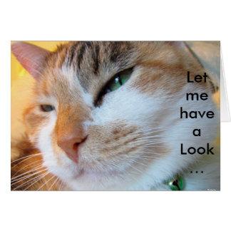 Tarjeta de cumpleaños divertida con el gato: