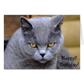 Tarjeta de cumpleaños divertida con el gato