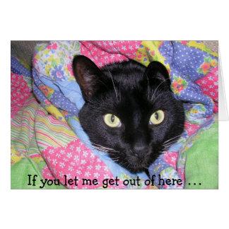 Tarjeta de cumpleaños divertida: Gato negro
