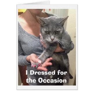 Tarjeta de cumpleaños enojada del gato