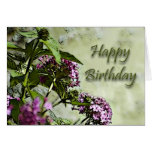 Tarjeta de cumpleaños especial del amigo