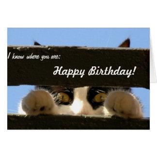 Tarjeta de cumpleaños: ¡Este gato le encontrará!