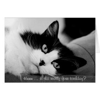 Tarjeta de cumpleaños: Gato perezoso