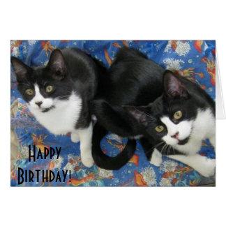 Tarjeta de cumpleaños gemela de los gatitos del