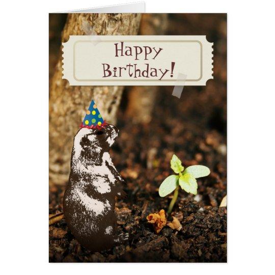 Tarjeta de cumpleaños linda de Groundhog