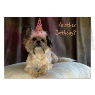 Tarjeta de cumpleaños linda del perro lanudo