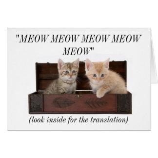Tarjeta de cumpleaños loca divertida de señora Cat