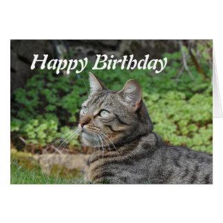 Tarjeta de cumpleaños: Minnie el gato