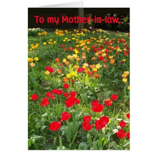 Tarjeta de cumpleaños para la suegra - 'tulipanes