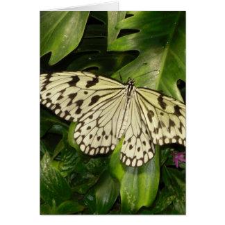 Tarjeta de cumpleaños romántica de la mariposa